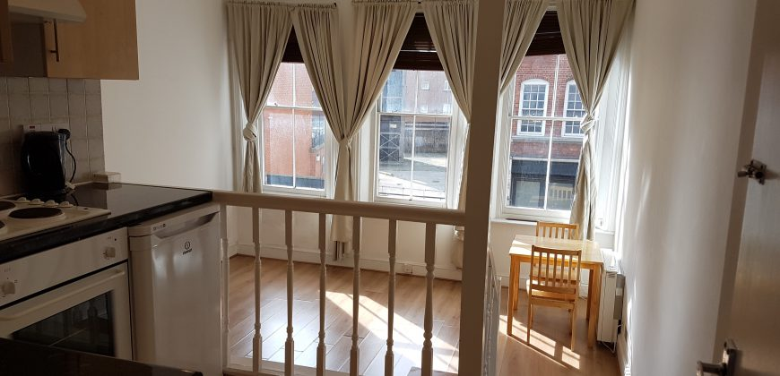 Studio Flat Farringdon Road EC1