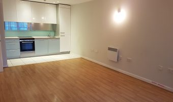 1 Bed Flat Blake Apartment New River Village N8