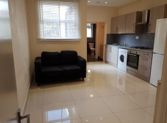 1 Bed Flat Mansfield Road E17